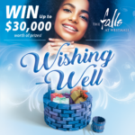 The Falls at Westmall Wishing Well Promotion